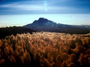 Kilimanjaro Climb Ice