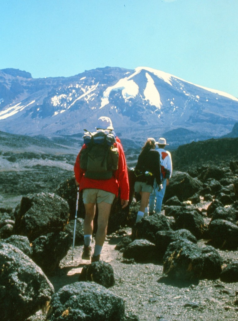 Early Days Tusker Trail on Kilimanjaro