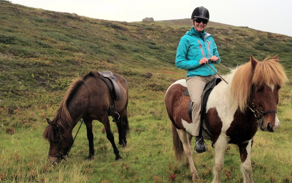 Iceland horse riding