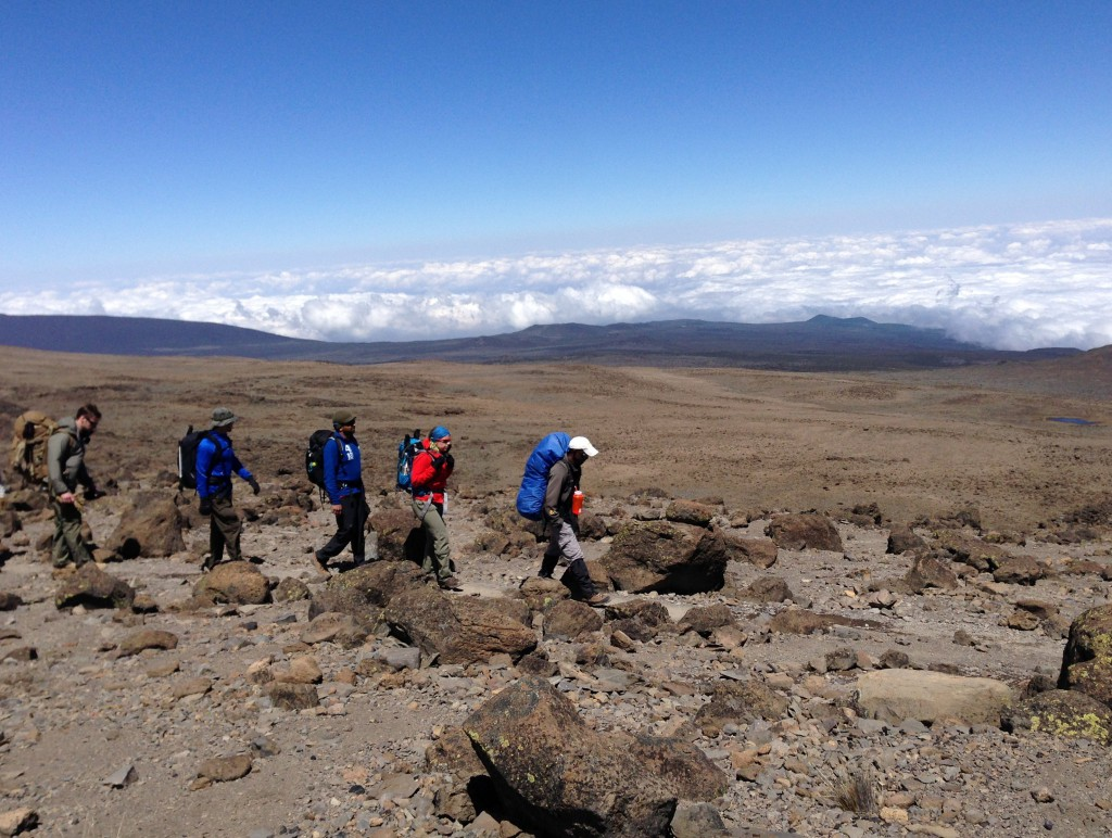 Traversing Kilimanjaro's Northern Circuit