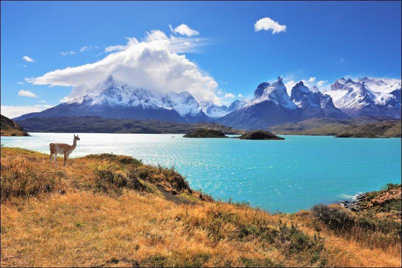 Patagonia Trek View